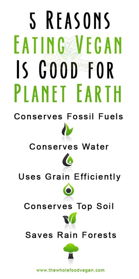 10 Reasons Why Being A Is Great by 5 Reasons Why Vegan Is For The Environment
