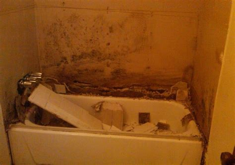 bathroom smells like mildew does bathroom mold smell 28 images how to get rid of