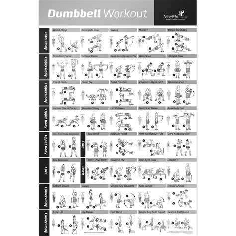 dumbbell workout exercise poster strength chart