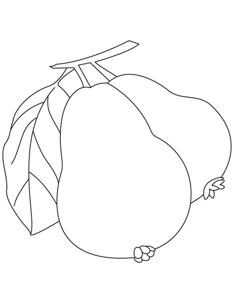 free coloring pages of small guava