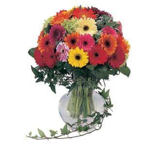 Buket Bunga Mutiara Murah 7 78 best images about buket bunga mawar untuk pacar on pink china and florists