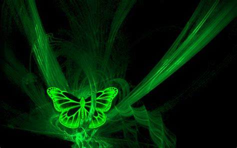 wallpaper green butterfly green butterfly hd wallpaper hd latest wallpapers