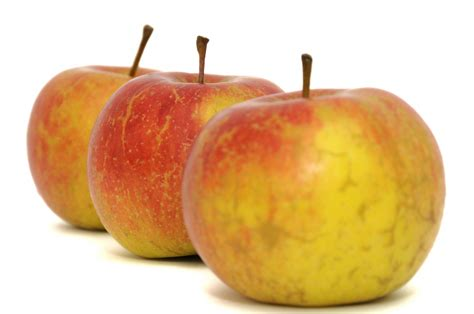pomme de si鑒e social pommes bicolore 8 fruit alimentation nourritures