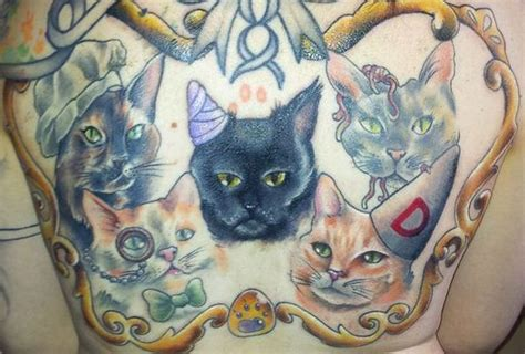 cat tattoo new york tattooing or piercing your pet is now illegal in ny