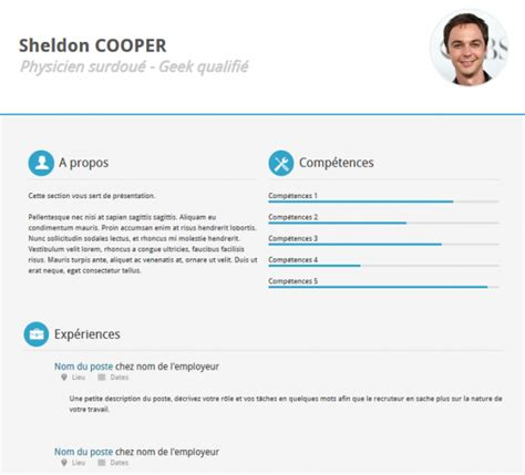 free premium template 20 professional html css resume templates for free