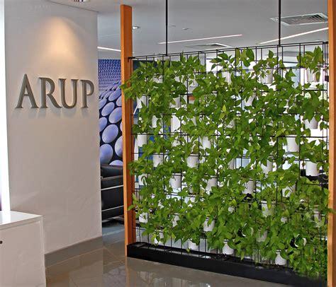indoor plant hire vertical garden screen indoor plant