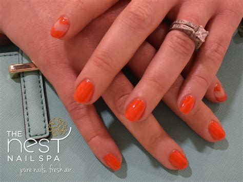 color nails and spa the nest nail spa colorado s premier nail spa