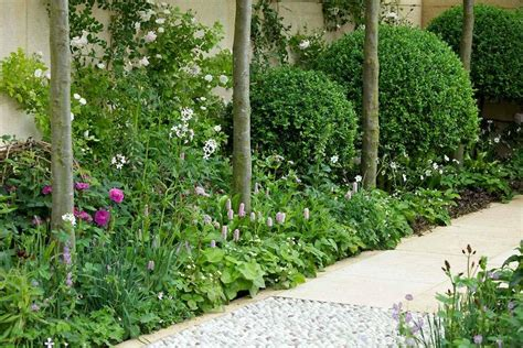 garden planting ideas uk garden design planning your garden rhs gardening