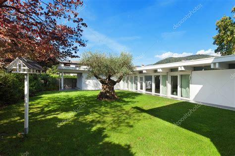 giardino con ulivo giardino di una casa moderna con l albero di ulivo foto