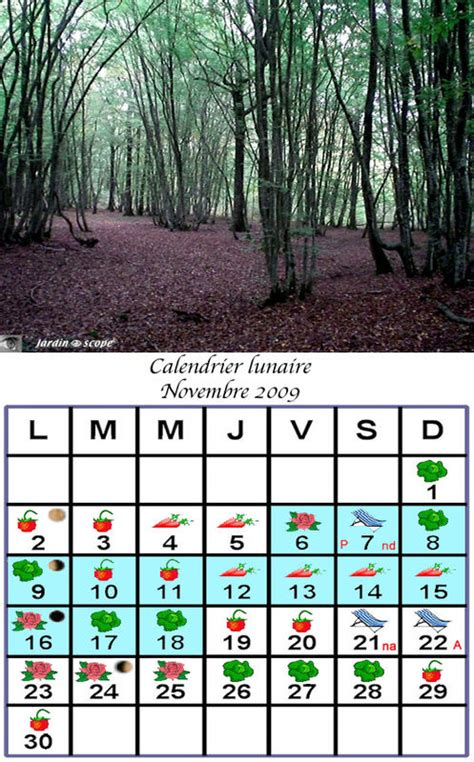 Calendrier Lunaire Novembre 2009 Jardiner Avec La Lune Au Mois De Novembre 2009 Le