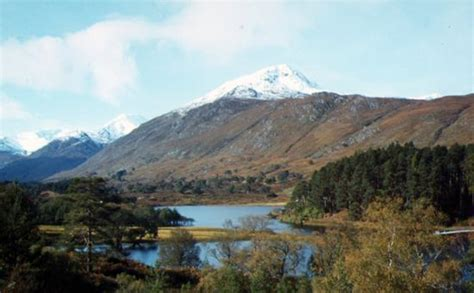 glen affric glen affric 40 minutes drive picture of inverness