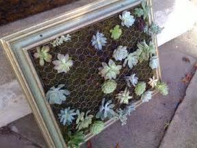 How To Make A Vertical Garden With Succulents Cool Diy Green Living Wall Projects For Your Home