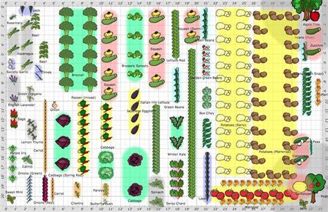 large vegetable garden layout cdxndcom home design