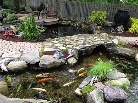 Aquascape Pools The Secret To Achieving A Crystal Clear Trouble Free Pond
