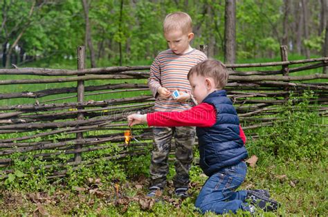 Two Small Boys Lighting A Fire In Woodland Stock Photo