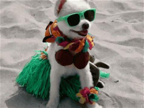 las redes sociales imagenes gif gif estoy de vacaciones gif 5282