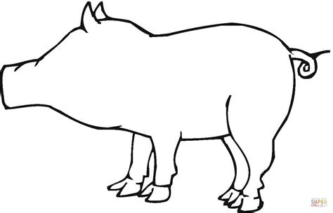 Outline Coloring Page by Pig Outline Images