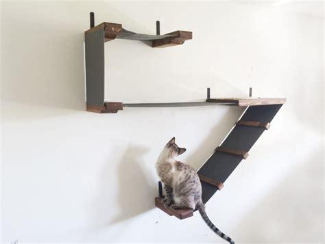 amaca gatti percorsi per gatti con tanto di lettini e tiragraffi
