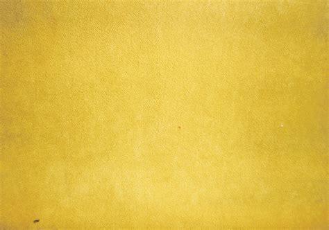 Gold Curtain Tassels Lush Velvet Gold
