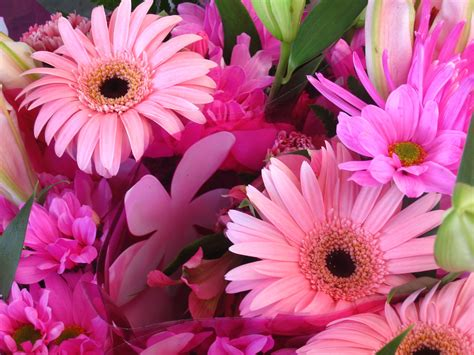 Send Fresh Flowers by Should You Send Fresh Flowers Or Silk Flowers Flower