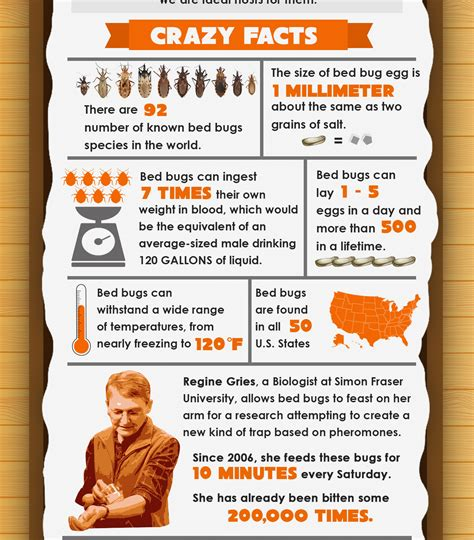 bed bug facts 7 crazy facts about bed bugs infographic bed bug guide