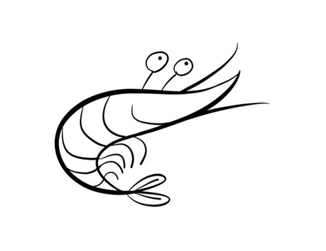 shrimp color shrimp free coloring pages