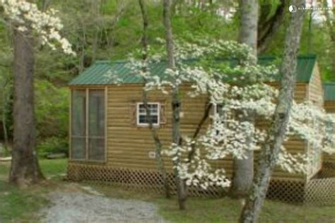 cabin rental in bryson city carolina