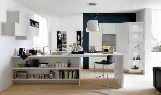 Open Kitchen Cabinet Ideas Open Modern Kitchens With Few Pops Of Color