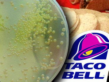 Taco Bell Make That Tacostada Bell Reopens In Mexico by Taco Bell To Reopen After E Scare Cbs News