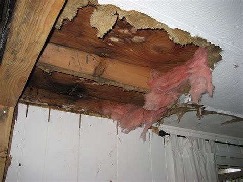 rooroof leak in philadelphia apartment best philly