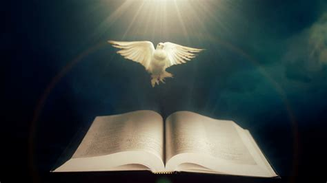 light in the bible bibles open with doves related keywords bibles open with