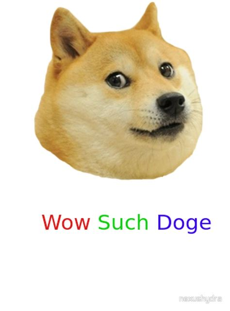 Such Dog Meme - such dog meme 28 images wow such original very meme