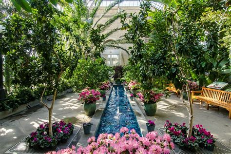 United States Botanic Garden Washington Dc Ruebarue Botanical Garden In Dc