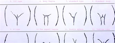 type of vanginal womenprobiotic showing now 21 unique and classical type