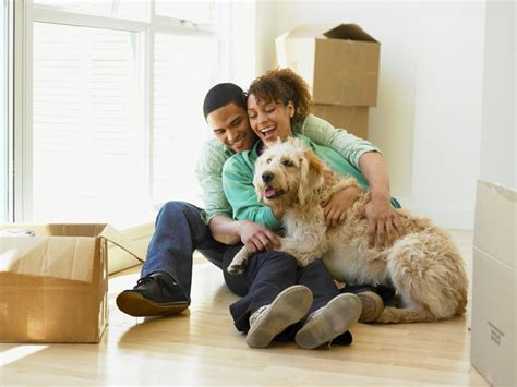 moving to a new house with a dog moving home with a dog house simple