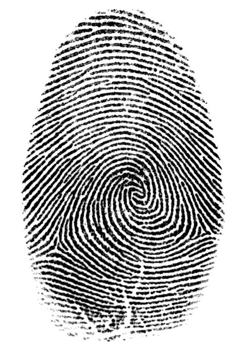 Fingerprints For Criminal Record Check Richmond Department