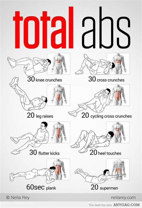 total abs workout infographics bauchmuskeln fitness workouts brustkorb