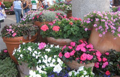 Flower Pot Gardens Flower Garden Festival Highlights The Disney