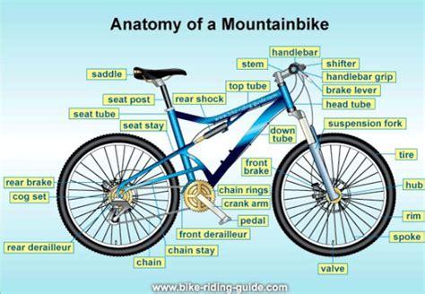 the anatomy of a mountain bike cool biking zone anatomy of a mountain bike hiking biking skiing and