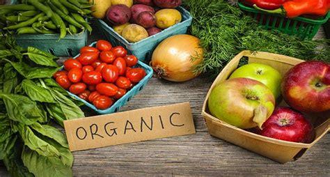 best organic foods best 5 organic food restaurants in india