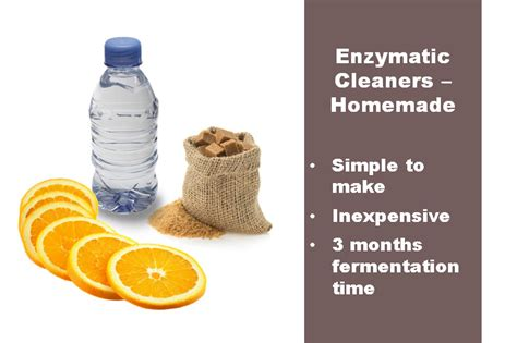 enzyme cleaner for urine make your own enzymatic cleaner the and effective way to destroy cat odor