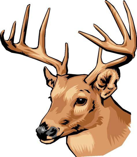 deer head deer head outline clipart best