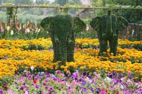 world beautiful flower gardens beautiful flower gardens