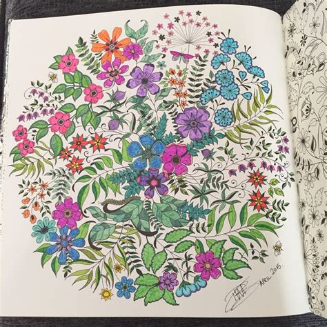 secret garden colouring book whitcoulls 267 best images about johanna basford on