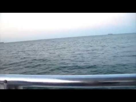 virginia beach boat rides rapper g swiss on boat ride dolphin watching in virginia