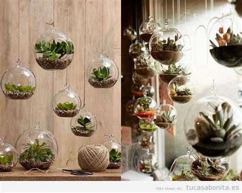decorar con plantas suculentas maneras de decorar una casa con suculentas unas plantas