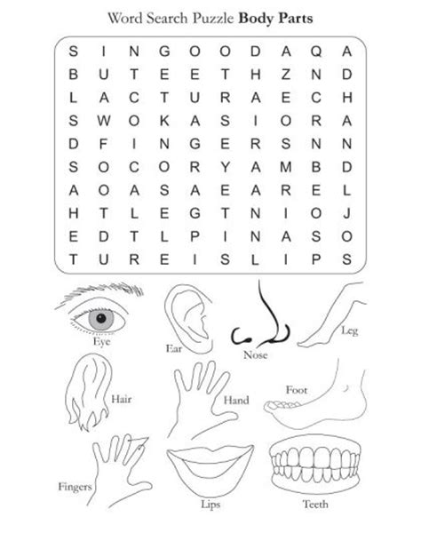 printable body puzzle 53 best my body images on pinterest learning resources