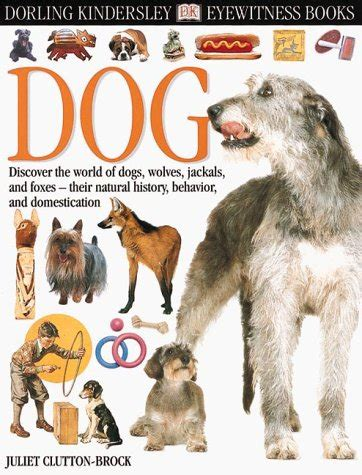 picture books about dogs eyewitness eyewitness books juliet clutton brock