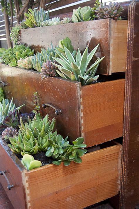 Succulent Gardens Ideas Top 10 Diy Outdoor Succulent Garden Ideas Top Inspired