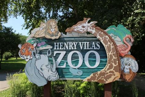 henry vilas zoo christmas lights giraffe lunch picture of henry vilas zoo madison